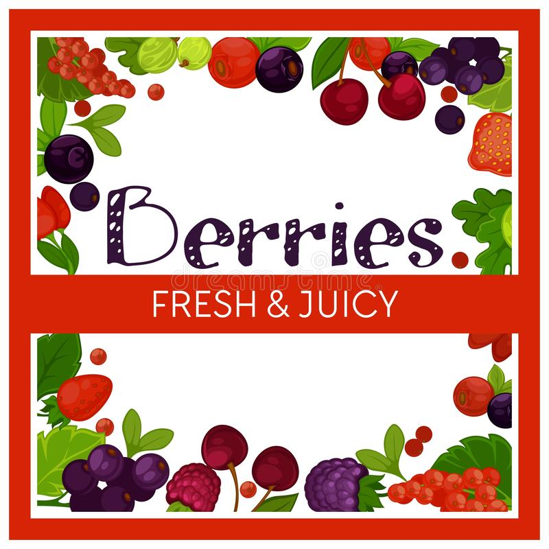 Fresh and juicy berries garden agriculture organic food. Organic food fresh and juicy berries garden agriculture vector goose berry blueberry and raspberry goose stock illustration