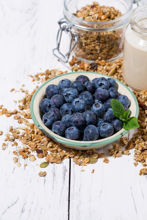 Fresh juicy blueberries and homemade granola for breafast on white background, vertical stock photography