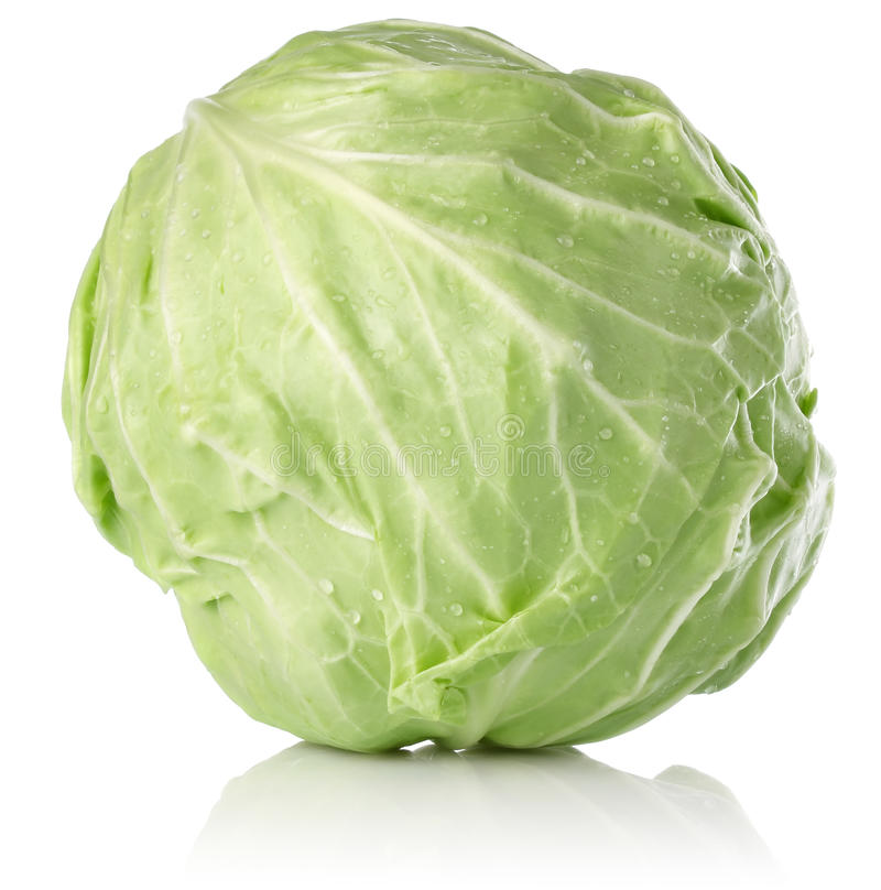 Download Fresh juicy cabbage stock photo. Image of cabbage, background - 24875522