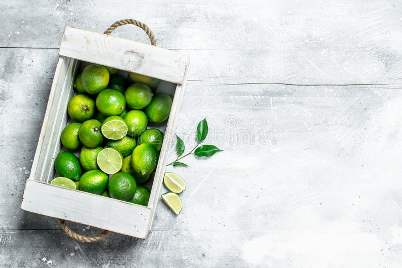Fresh juicy lime in the box stock photos