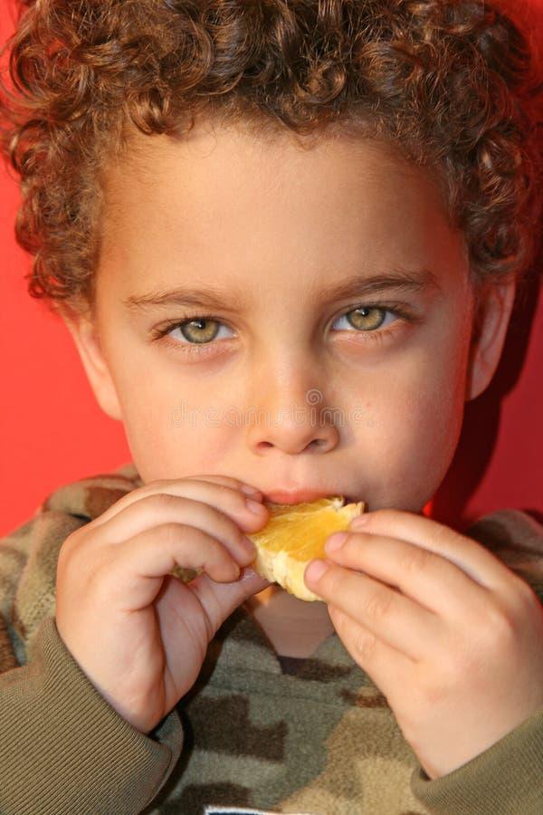 Free Fresh Juicy Orange Indulge Stock Photos - 1945573