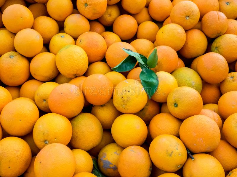 Fresh juicy organic oranges on the farmers market. Close-up orange background stock photo