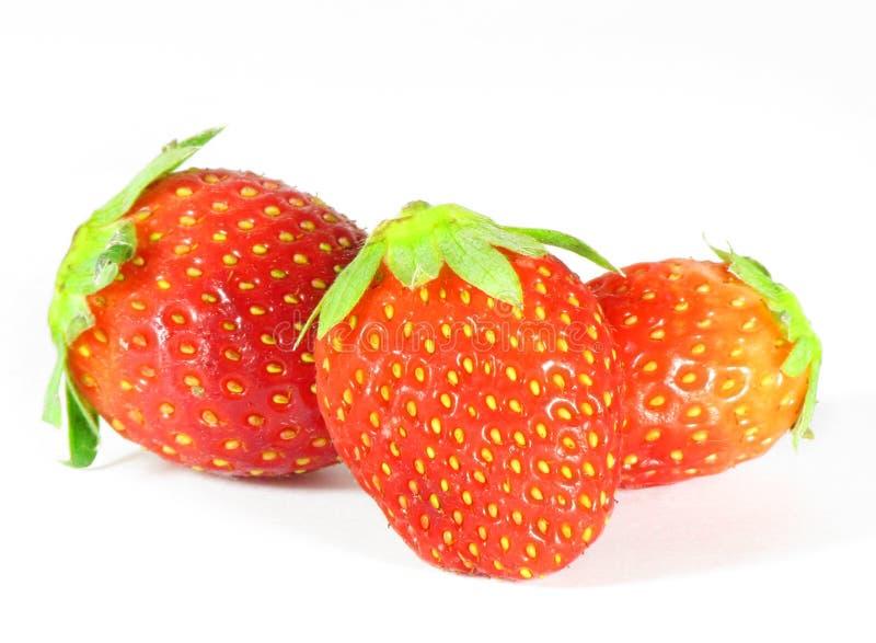 Fresh juicy red strawberries on white stock image