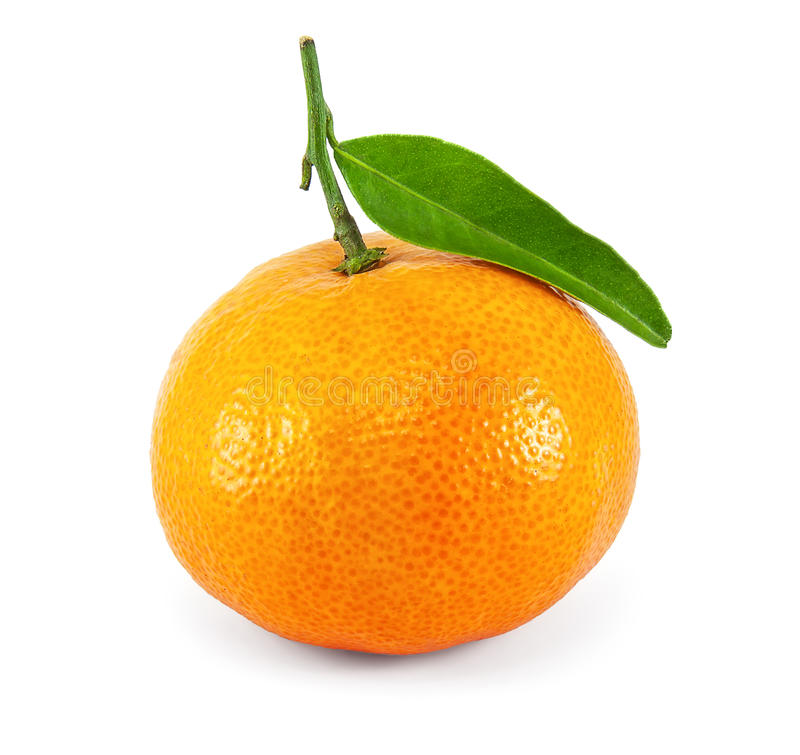 Fresh juicy tangerine royalty free stock images