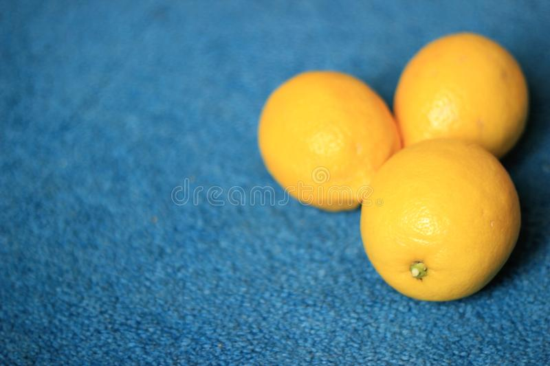 Fresh Juicy Yellow and Organic Lemons on blue background. Perfect for summer time Lemonade, good health and with a lot of vitamin C , B6, Thiamin. Minerals stock image