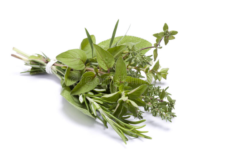 Fresh kitchen herbs royalty free stock images