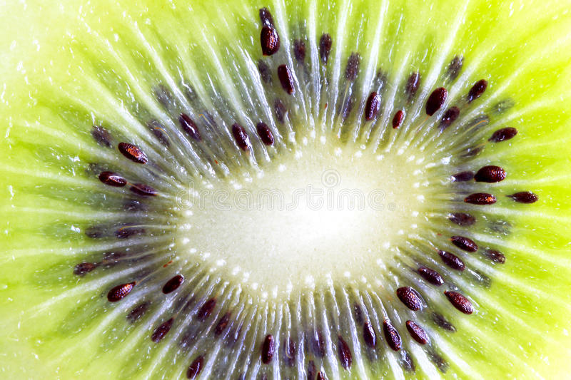 Fresh kiwi fruit. Image of the inner part of fresh kiwi fruit, reveals the textures, patterns, color and seeds stock image