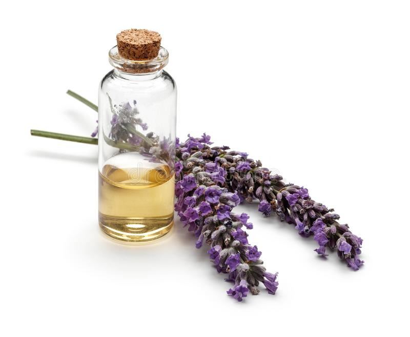 Fresh lavender and a bottle of lavender oil isolated royalty free stock photos