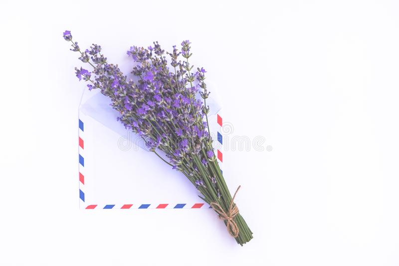 Fresh lavender bouquet and blank airmail envelope isolated on white background. Romantic message concept with copy space. Fresh lavender bouquet and blank stock images