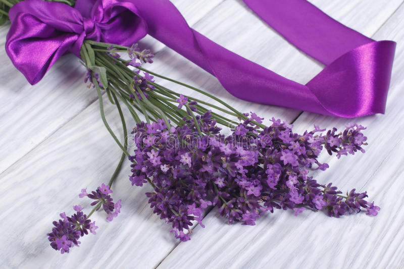 Download Fresh Lavender Flowers With Purple Ribbon Stock Photo - Image: 32176030