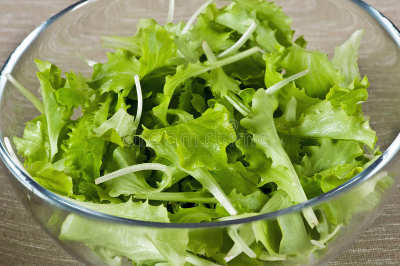 Fresh leafy green salad in a glass bowl. Fresh leafy green salad with lettuce and herbs served in a glass bowl closeup high angle view stock photo