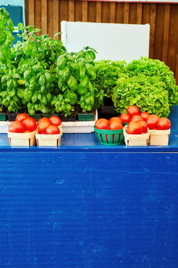 Fresh leafy green vegetables and tomatoes in a basket on the market stall. Fresh leafy green vegetables and tomatoes in baskets on the farmers market stall royalty free stock photos