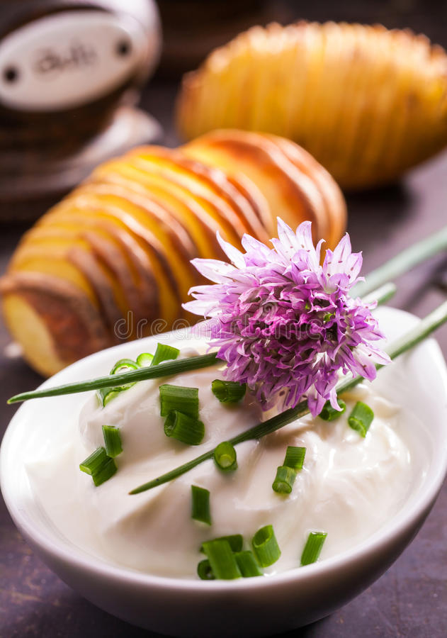Fresh leaves and flower of a chive plant. Allium schoenoprasum, a popular potherb used as a flavoring and garnish in cooking and salads for its onion-like stock photography