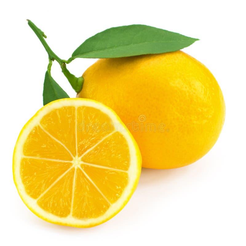 Fresh lemon citrus stock images