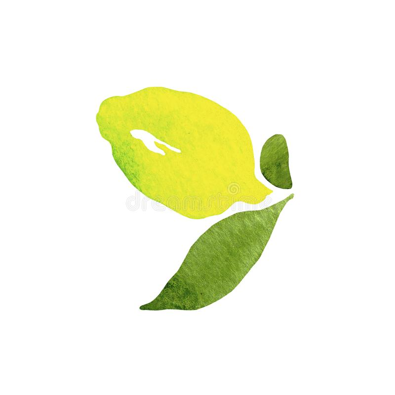 Fresh lemon fruit with green leaves on white background in beautiful style  .   Illustration.  Design element.Citrus collection. royalty free illustration