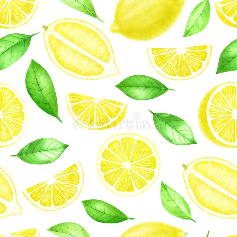 Fresh Lemon fruits whole and sliced seamless pattern. Citrus with leaves isolated on white background. Watercolor hand vector illustration