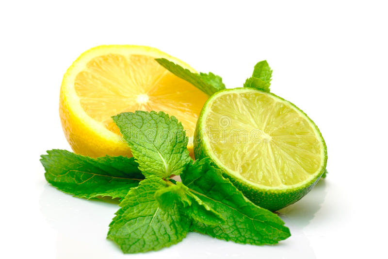 Fresh Lemon, Lime and Mint royalty free stock photos