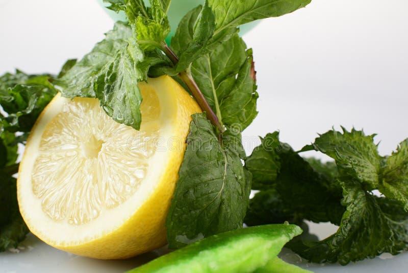 Download Fresh Lemon With Mint Stock Image - Image: 29027091