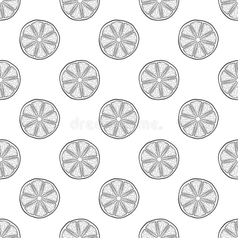 Fresh lemon slice, half of orange. Vector in doodle and sketch style. Isolated on white background, seamless pattern, texture, art, cartoon, citrus, clip vector illustration