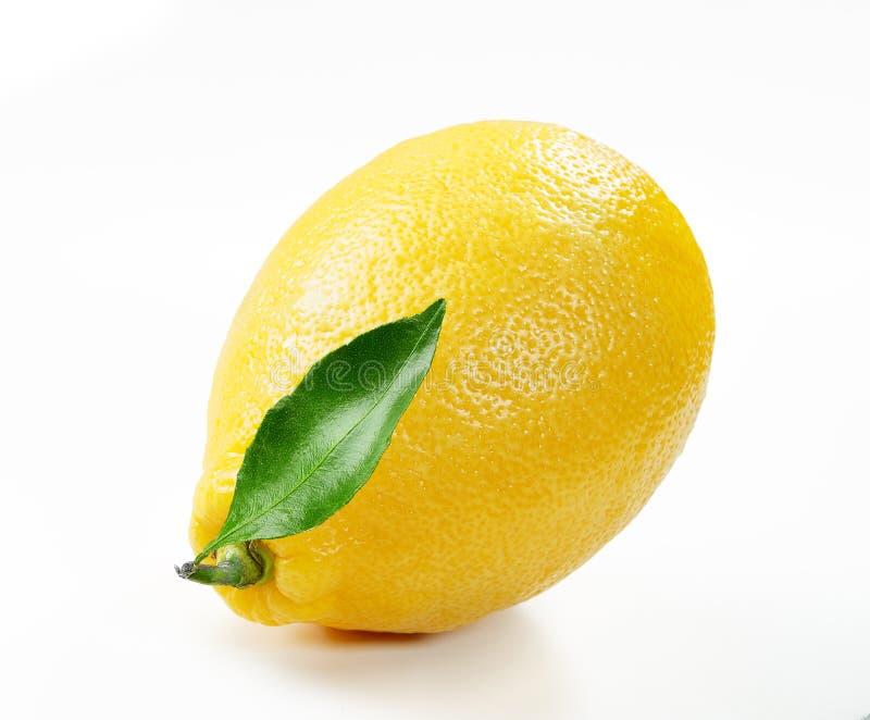 Fresh lemon with slice and leaf isolated white background. Close up stock images