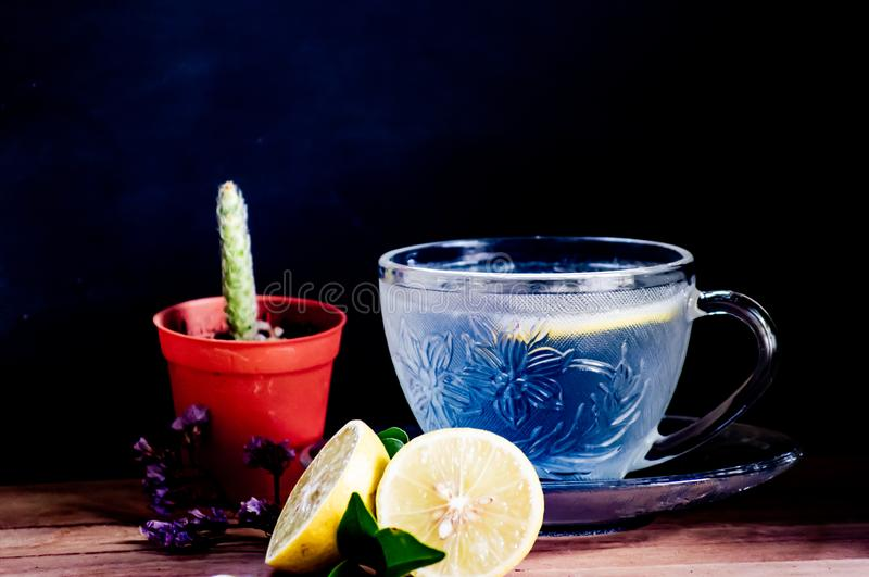 Fresh lemon soda soft drinks served in beautiful crystal glass with small plate and small cactus decoration. Italian soda ,lemon soda soft drinks served in stock photo