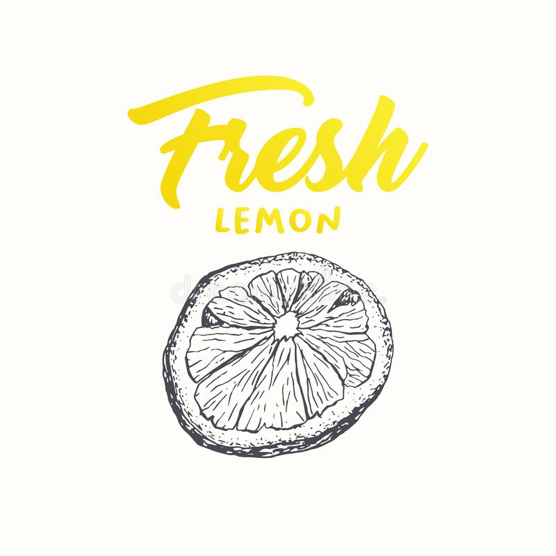 Fresh lemon vector banner design. Fresh lemon vector banner template. Sketch fruit clipart. Sliced lemon engraving style drawing. Handwritten calligraphy royalty free illustration
