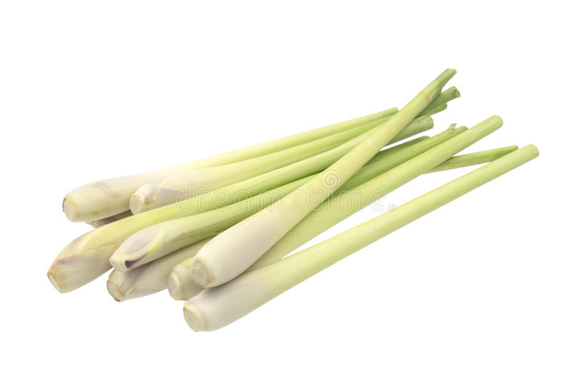 Fresh Lemongrass (citronella) isolated on white background, with royalty free stock photography