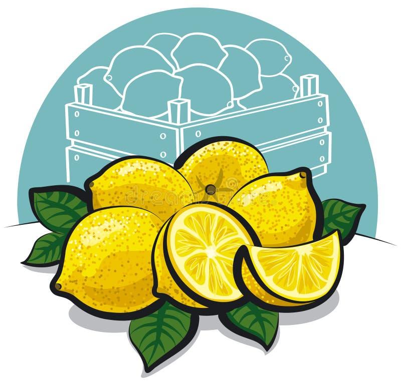 Fresh Lemons Stock Photography