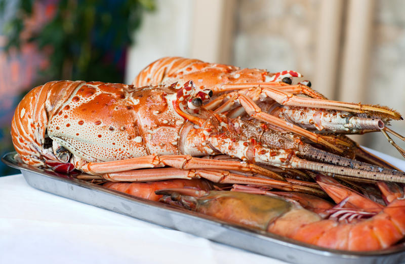 Fresh lobster plate stock photography