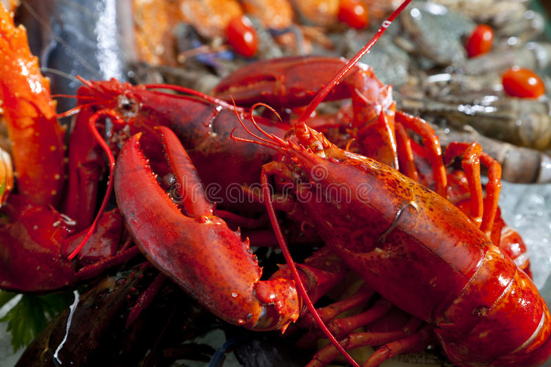 Fresh lobster and scallop in the ice stock photography