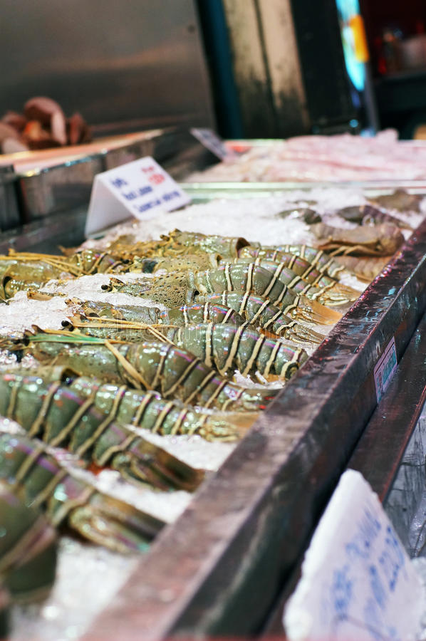 Fresh lobster seafood arrangement displayed in market, thailand stock image