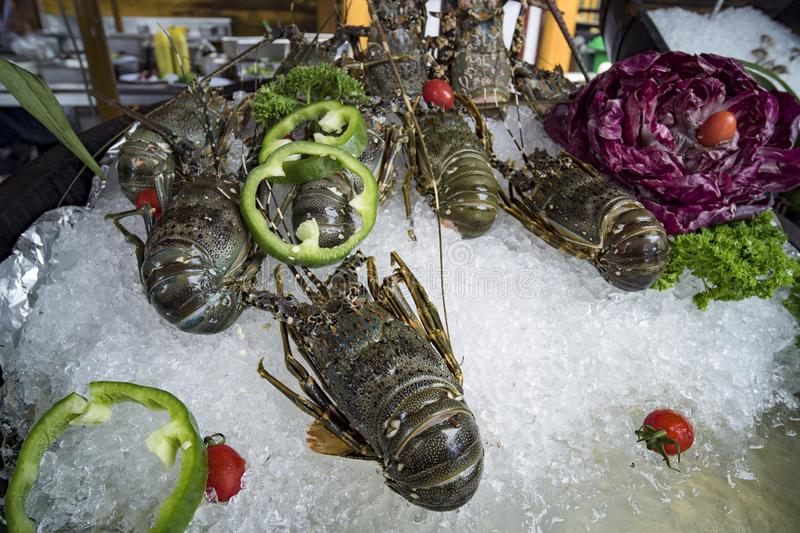 Street food in Asia spiny lobsters close-up. Fresh lobsters on ice. Street food in Asia spiny lobsters close-up royalty free stock photo