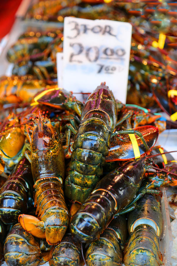 Lobsters. Fresh lobsters at a seafood market royalty free stock image