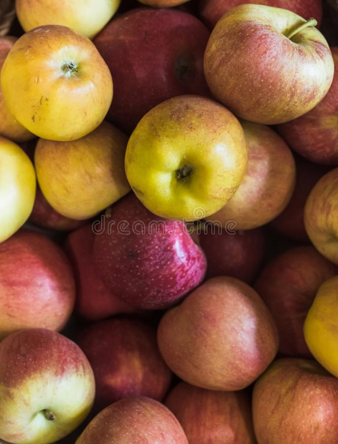 Fresh locally grown fuji apples at local farmers market. Lettuce. Varieties of lettuce in a local market from local agriculture in the Basque Country royalty free stock image