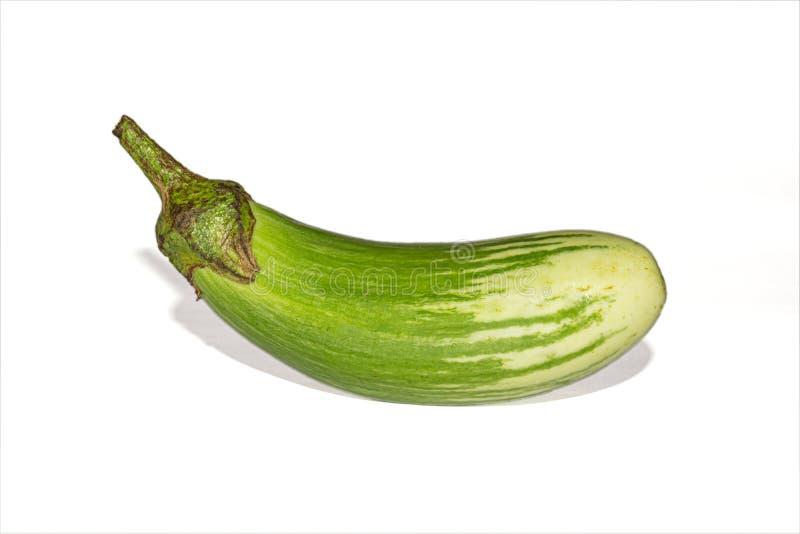 Fresh long green brinjal,thai green eggplant or aubergine on white background. Fresh,raw and organic long green brinjal,thai green eggplant or aubergine stock image