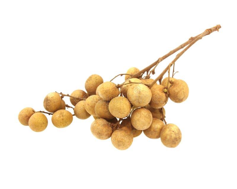 Fresh longan fruits isolated on white background stock photos