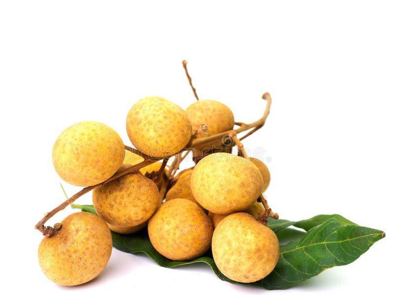 Fresh longan fruits isolated on white background. stock photo