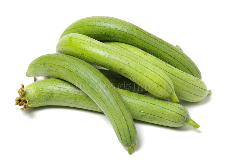 Fresh loofah . It is very rich in nutritional value. It can not only edible, but also have medicinal value.in traditional Chinese. Medicine isolated on white stock image