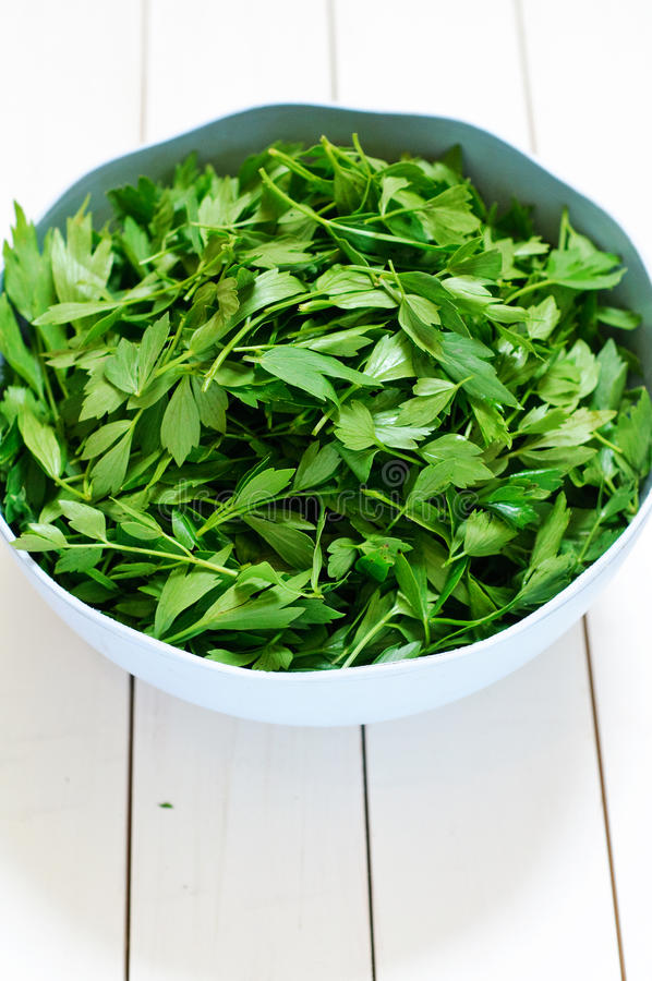 Download Fresh Lovage In A Plastic Bowl Stock Photo - Image: 25059746