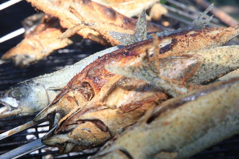 Fresh Mackerel on Stick at Barbecue Party royalty free stock photos