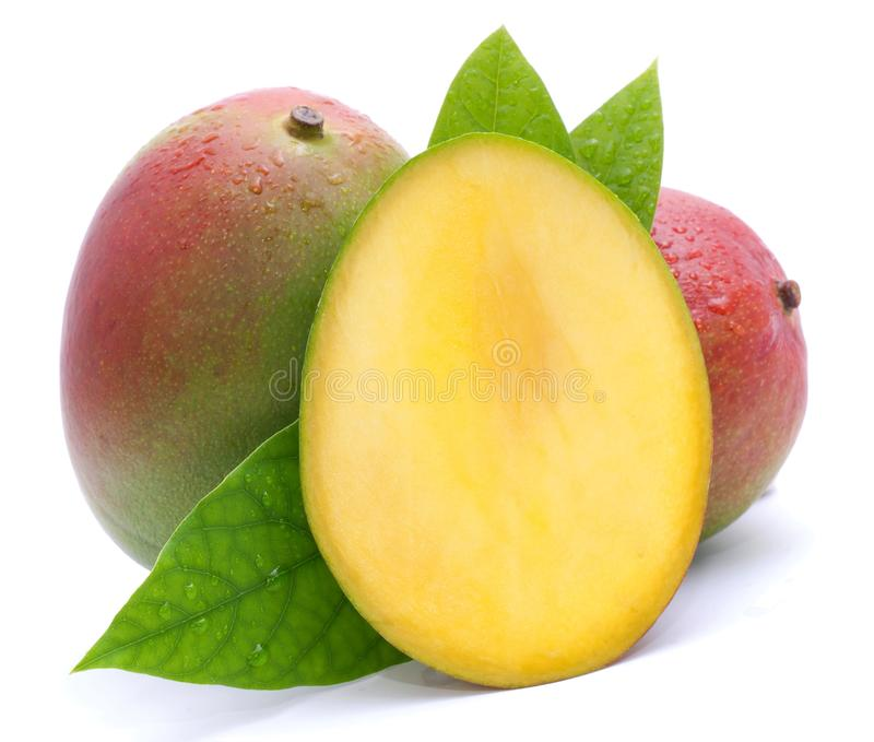 Fresh mango royalty free stock images
