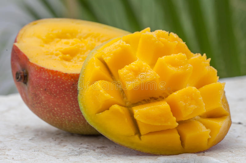 Fresh mango organic product. On a tropical outdoor background stock photos
