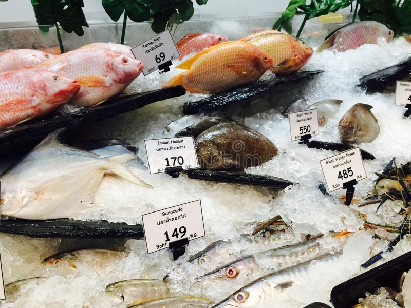 Fresh marine seafood. Soaked in ice on the market and supermarket stock image
