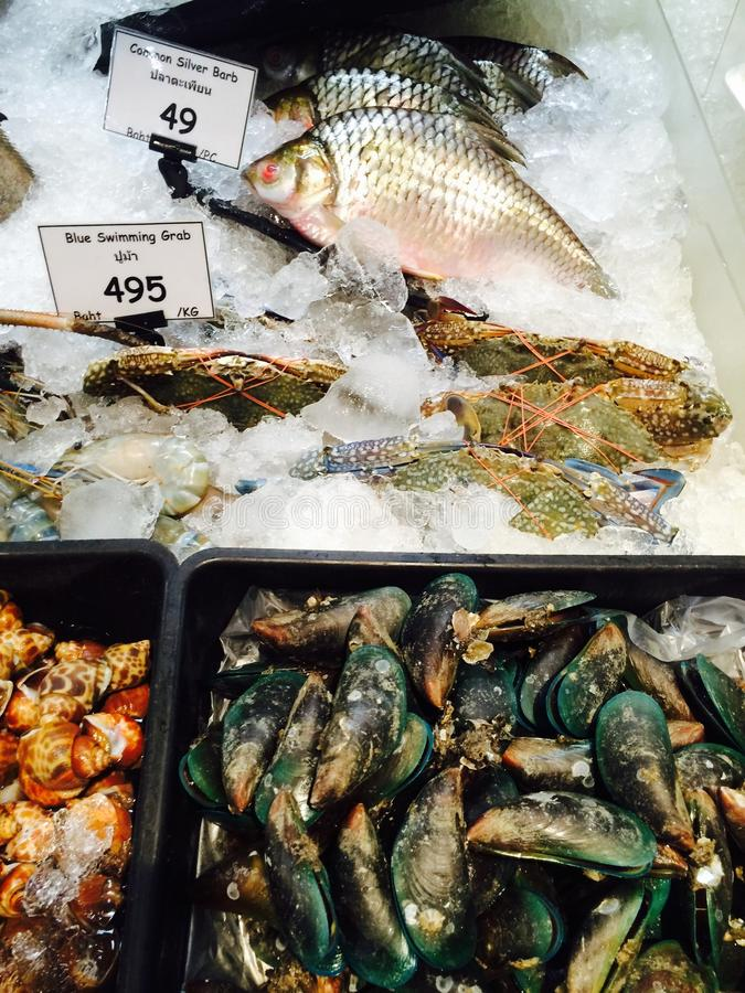Fresh marine seafood. Soaked in ice on the market and supermarket royalty free stock photography