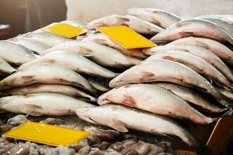 Fresh Market Seller, Fish Seafood Fresh Raw Food royalty free stock image