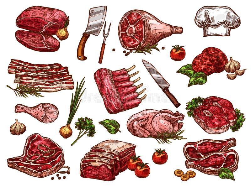 Vector sketch icons of fresh butchery meat. Fresh meat sketch icons for butcher shop or farm market. Vector isolated butchery beefsteak loin, pork tenderloin vector illustration