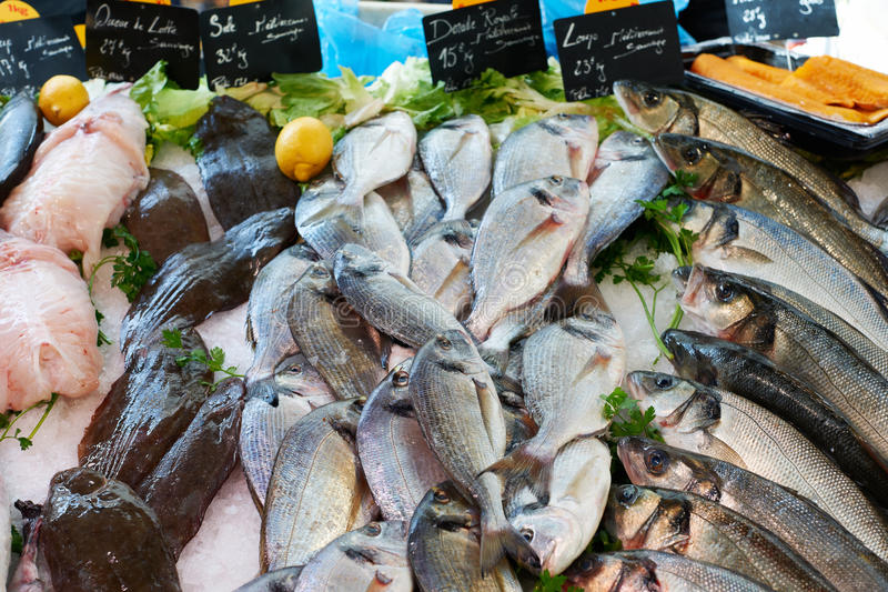 Fresh mediterranean fish on market in France. Fresh fish for sale on sea food market stall in Marseille, Provence, France royalty free stock photography