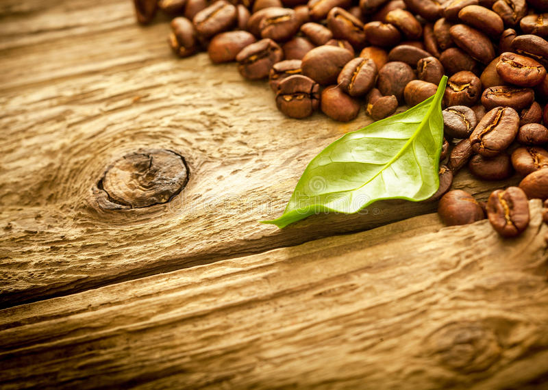 Fresh medium roast coffee beans on rustic wood royalty free stock images