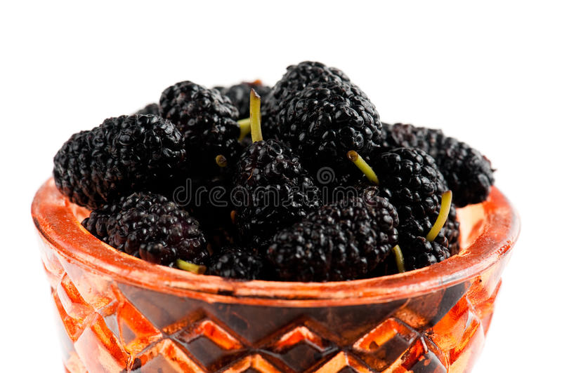 Fresh mulberries royalty free stock image
