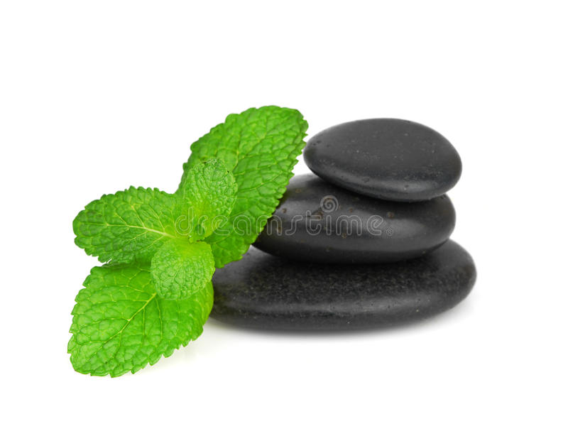 Download Fresh Mint On The Black Stones With Drops Stock Image - Image: 29557945